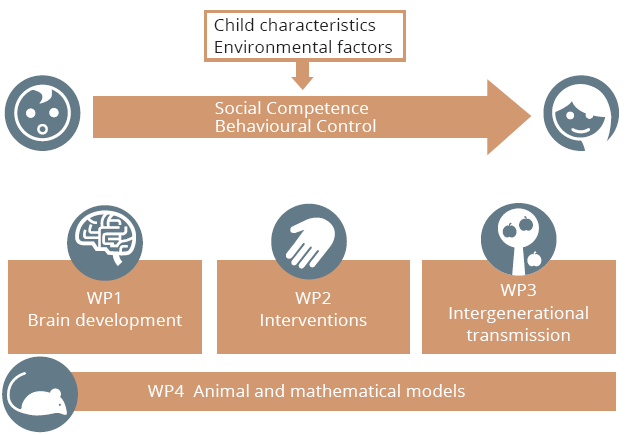 How the environment and child characteristics affect the development of social competence and behavioural control.